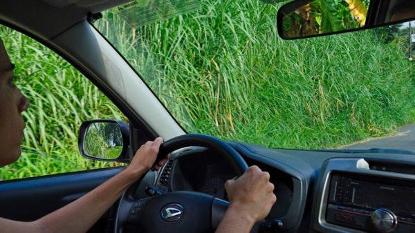 Alquiler de coches en Costa Rica, ¿4×4? ¿Carnet internacional?