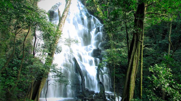Cascada Rincon de la vieja