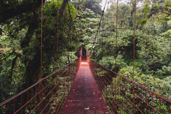Bosque Nuboso de Monteverde (Costa Rica)