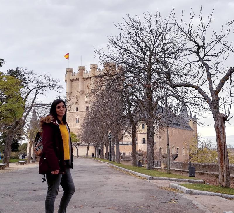 Nomada frente Alcázar de Segovia