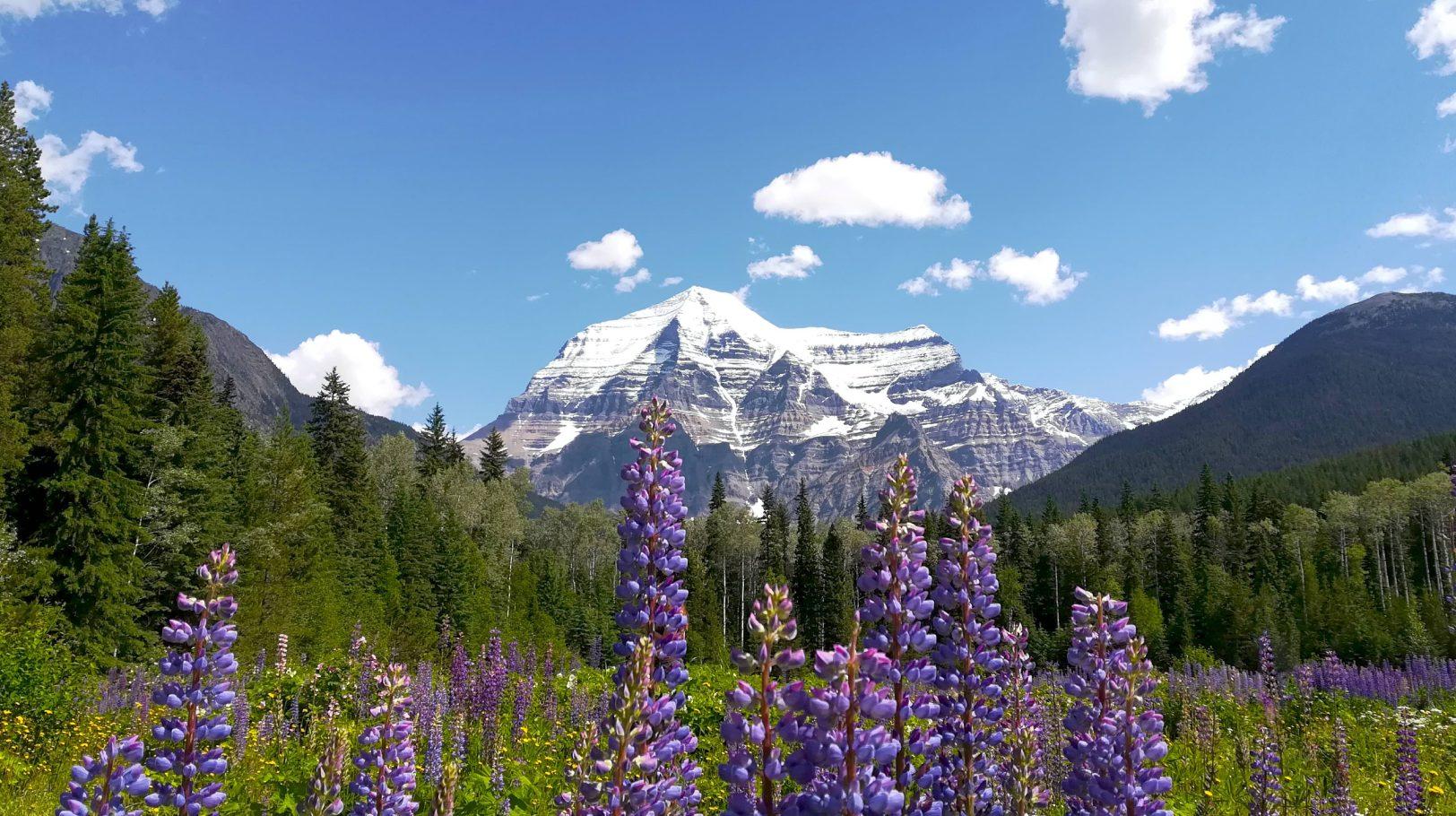 Visitar Mount Robson Provincial Park